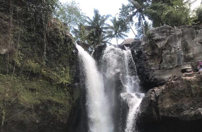 バリ島 ウブド観光 レンタルバイク トゥグヌンガンの滝4