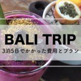バリ旅行 費用 3泊5日 2018年11月