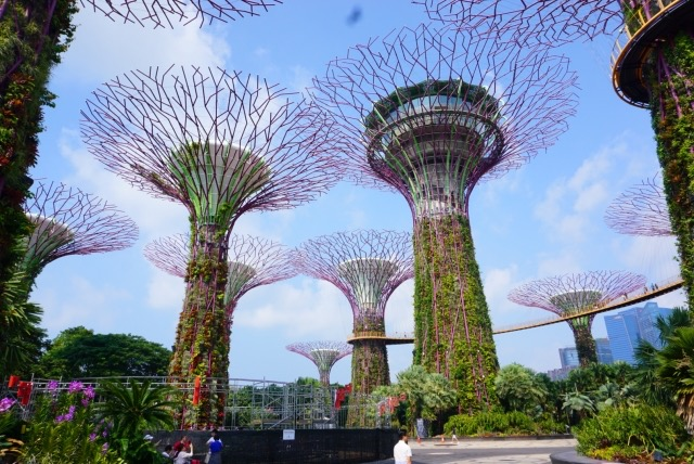 シンガポール 観光 おすすめ ガーデンズバイザベイ