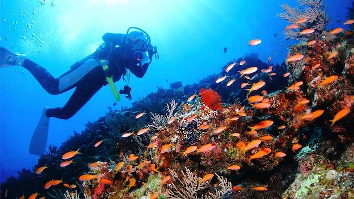 沖縄旅行 青の洞窟 ツアー