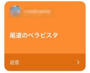広島_ベラビスタ